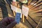 天田神社でおみくじ引いてみた!〜出たおみくじに書いてる内容がまぁまぁ手厳しい!〜
