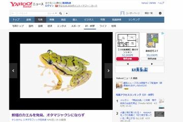 オタマジャクシにならない新種のカエルが発見されるもすでに絶滅の危機