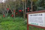 近畿大阪銀行の森には『巣箱』がメッチャある!~交野山登山口すぐのところ~