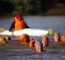 【画像】ナイル川を泳いで横断、スーダン駐在のオランダ大使