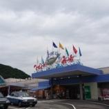 『白浜プチ旅行④~とれとれの湯で岩盤浴&とれとれ市場でお買い物』の画像
