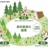 『花粉の少ない杉を1棟建てるごとに100本植えるタマホームの取り組みに賛否!?』の画像
