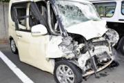 【埼玉】軽とゴミ収集車が正面衝突…赤ちゃん含む家族3人死亡 父親が走行中に意識失ったか ブレーキ痕なし