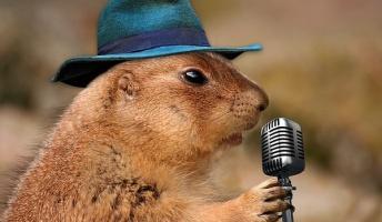 カラオケコミュ障のお前らに短期間で歌が上手くなる方法を教える