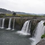 『原尻の滝 桜、菜の花、チューリップ』の画像