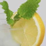 『レモンサワーの魅力』の画像