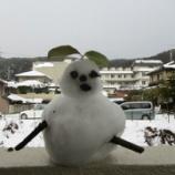 『今年こういう雪が初めてあって うれしくなった!』の画像