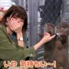 『諏訪彩花さんとカワウソって言うほど似てるか??』の画像