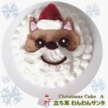 『食べるのがもったいない!【ワンちゃん用クリスマスケーキ】ご注文承り中!』の画像