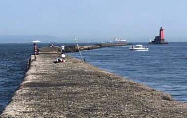 『東京 黒鯛神 第5回 野島例会』の画像