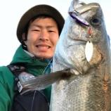 『大阪港エリアは復調の兆し?』の画像