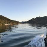 『カレイを釣ろう、鳴門ウチノ海(2019/4/13)』の画像