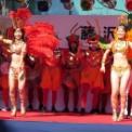 第15回湘南台ファンタジア2013 その12 (サンバ ウニアン・ドス・アマドーリスの4)