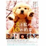 『映画『犬と私の10の約束』の元になった英文の詩『犬の十戒』』の画像
