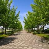 『加須はなさき水上公園でパターゴルフを楽しんできた話』の画像