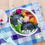 『クジラのキャラ弁*夏のお弁当まとめてみました』の画像