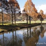 『【軽井沢】行ってみたいおすすめゴルフ場ランキング』の画像