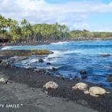 『ハワイ島&オアフ島の旅:憧れのプナルウ黒砂海岸』の画像