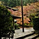 『湖東三山 松峰山 金剛輪寺へ行ってきました⑤』の画像