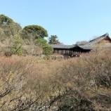 『東福寺の2021年涅槃会に行ってまいりました』の画像