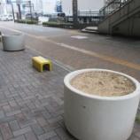 『【北九州】FLOWER BED』の画像