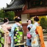 『京都・伏見「辻政」』の画像