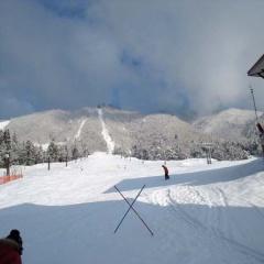 ひだ流葉でスキー