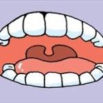 一番嫌な夢って「歯が抜ける夢」だよな??