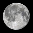 『満月(月齢15.8)の夜は大忙し!』の画像