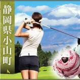『静岡県小山町のふるさと納税にサーティワンアイスのギフト券が復活!但し返戻率は以前よりダウン。』の画像
