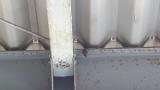 屋根に小さい蜂の巣発見したんだけどお手軽な駆除方法ないか(※画像あり)