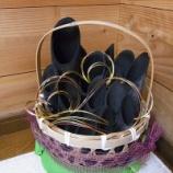 『炭は隅に置いて吉 ー最も効果的な炭の配置ー』の画像