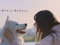【乃木坂46】遠藤さくら、ACジャパンのCMに抜擢!!!