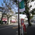 『新製品:LAOWA11mmF4.5試写③~千川通り 2020/12/03』の画像