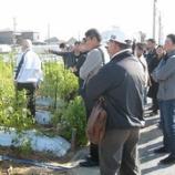 『農業とつながる新ビジネスセミナー!新しい形の農業を視察!!』の画像