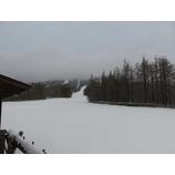 『フワッと雪が積もりました。』の画像