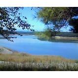『今日の狭山湖』の画像