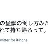 『【乃木坂46】速攻反応しててワロタwww 武井壮『飛鳥ちゃん、オレの猛獣の倒し方みたいなことを。。。』』の画像