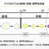 『感染症時代における光マイクロバブルの思考(4000回記念)(4)』の画像