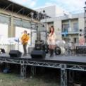 第61回東京大学駒場祭2010 Sarah Alainn(サラ・オレイン)ライブ
