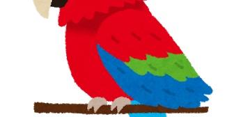 嫁ぎ先にいる鳥が100歳近いと知って衝撃。毎日のんきに餌を食べて歌ってばかりいると思っていたけど戦禍をくぐり抜けた猛者だったとは。