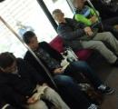 【画像】 迷い猫、電車内を走り回る
