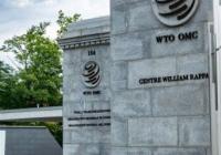 登る前にハシゴ外されちゃったね 〜 【米国】 日本支持を鮮明に 日韓紛争「WTOにそぐわず」