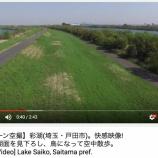 『(ドローン空撮)彩湖快感映像!木々と湖面を見下ろし、鳥になって空中散歩。』の画像