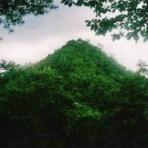 大和武史のblog