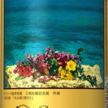 『【限定発売】ヤオコー限定「ヱビスビール ヤオコー川越美術館 オリジナルデザイン缶 ギフトセット」発売』の画像
