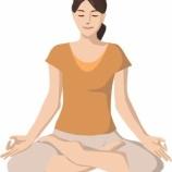 『座禅と瞑想の違いー川上雪担老師とその語録』の画像