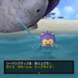 『キュララナビーチで巨大魚が釣れます!』の画像