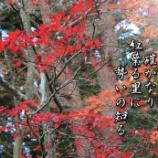 『赤々と萌ゆ』の画像