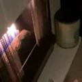 【ネコ】 寒かったので暖炉に火を入れた。でろろ~ん♪ → 1匹の猫はこうなった…